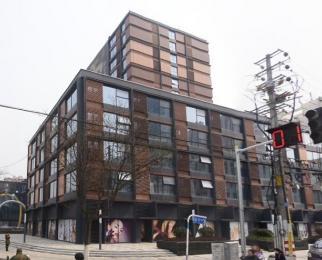 大行宫 常府街地铁口 商业核心地段 精装修 电梯口 随时看房