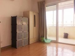 南京外国语 祥和雅苑精装单室套 单价2W3拎包入住 1号轻轨