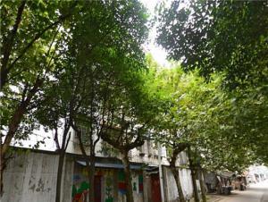 北埂小区,芜湖北埂小区二手房租房