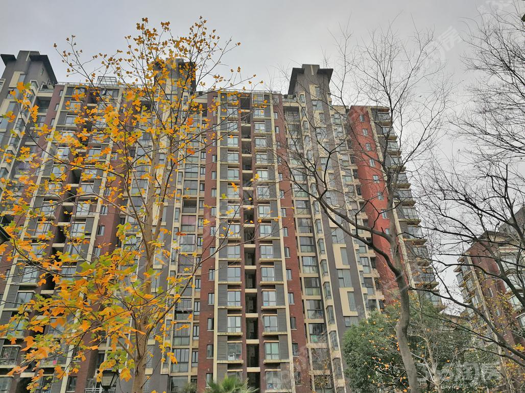 中央城C区,公寓,有阳台,民用水电,生活方便,看房方便