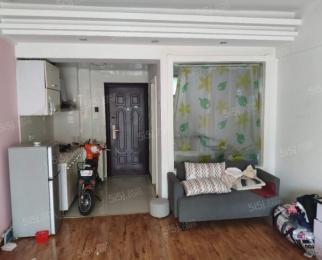香樟园 精装单室套 设施齐全 拎包入住 仙林南外居家陪读