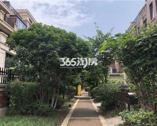 朗诗科技住宅 恒温恒湿 全新环保设施 拎包入住 仙林南外陪读