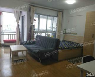 托乐嘉单身公寓 1室0厅 55平