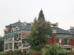 香格里拉花园 稀缺多层 采光好 房东急卖 二十九中学区