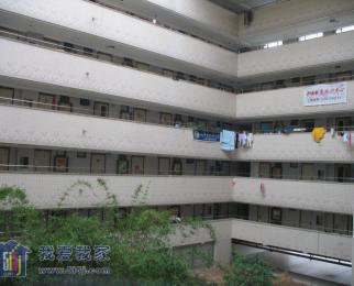 摩尔特区 精装修 单身公寓 采光刺眼 设施都齐全 可以月付 拎包住