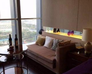 雨润中央公馆 豪装单室 温馨整洁 拎包入住 配套齐全 交通