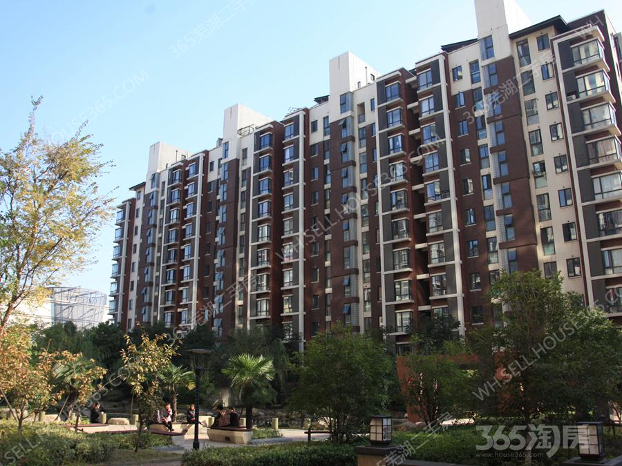 中央城精装三房 设施齐全拎包入住 采光充足 视野开阔