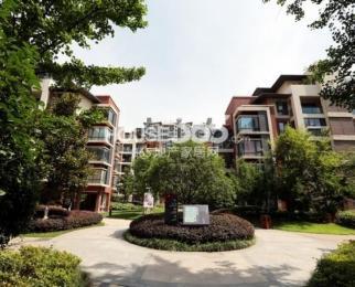 中央城单身公寓Ca7161室1厅1卫45�O整租精装