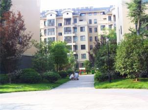 禹洲华侨城实景图