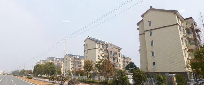 紫枫雅苑2室2厅1卫87平米整租毛坯