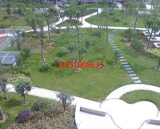 S1翠屏山 南航托乐嘉 精装单室套 设施齐全 万科物业 环境优雅