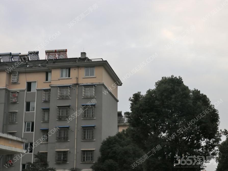 鸠兹家苑3室2厅1卫120.32平方产权房简装