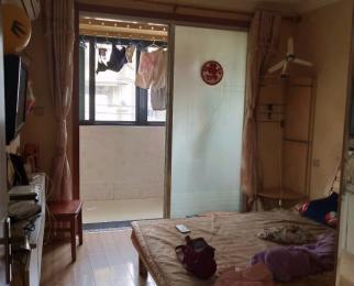 凤凰街 房子有钥匙 地铁口单室套 拎包入住 居家装修 看房
