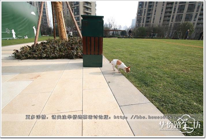 【茶坊抢先看】正荣润江城公开138�O实体样板间和润锦城景观示范区,小区绿化面积很大,四房还带储藏室