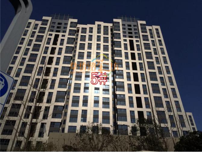 必看帖!有图有真相!河西8大豪宅光照PK!总价千万买的是小黑屋还是阳光房?