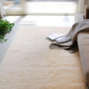客厅丝绒地毯