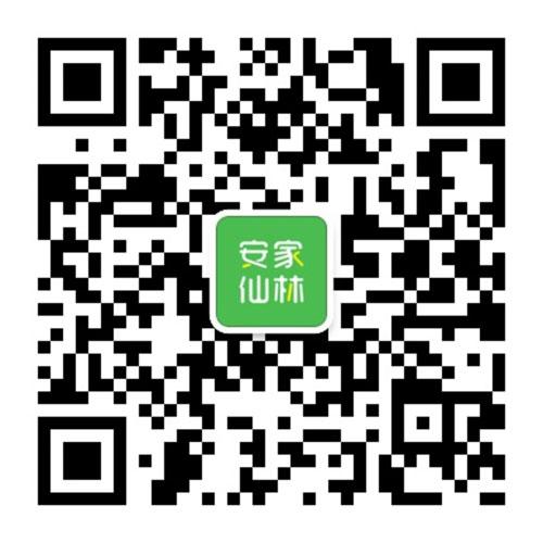 【阿紫十八变③】网传地铁4号线确保春节前具备试运营条件!有图有真相,快来看!
