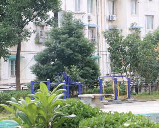世茂滨江花园,精装,11中学区