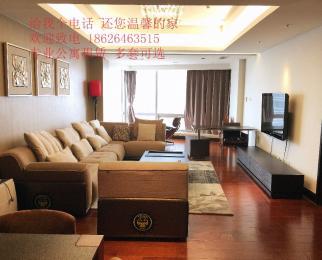 五星级豪装湖景套房 怡景公寓 南京国际 地铁口