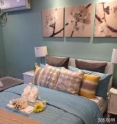 南京鼓楼 小市地铁口精装小公寓 包租包管5000 三线地铁