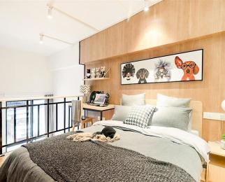 雨花门南城美景拎包入住 繁华地段 随时看房 单身公寓 生