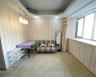 将军大道S1 托乐嘉单身公寓 居家精装单室套 设施齐全厅室