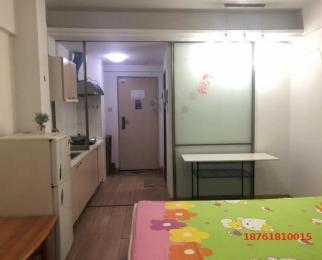 新出月付好房 将军大道 托乐嘉精装单身公寓 干净清爽 电梯房
