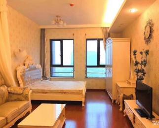 南湖云锦路 金地名京 单身公寓 地铁口2号线河西万达广场