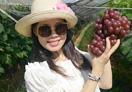 汤山鎏园带你采摘葡萄