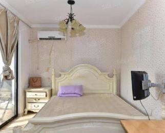 国际公寓 精装单室套 首次出租 看房随时 拎包入住
