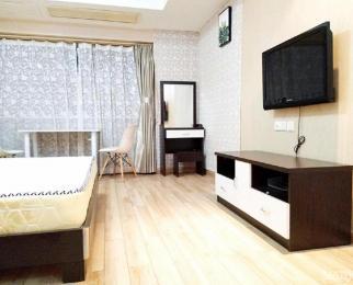 夫子庙 京隆国际公寓 精装 单身公寓 拎包入住 随时看房