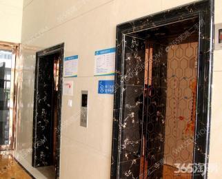 碧桂园3室2厅1卫96.39平米整租精装
