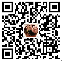 #六一节,我在华侨路茶坊发福利# 365淘房华侨路茶坊亲子俱乐部正式招募啦!!!