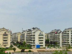 新河小区,安庆新河小区二手房租房