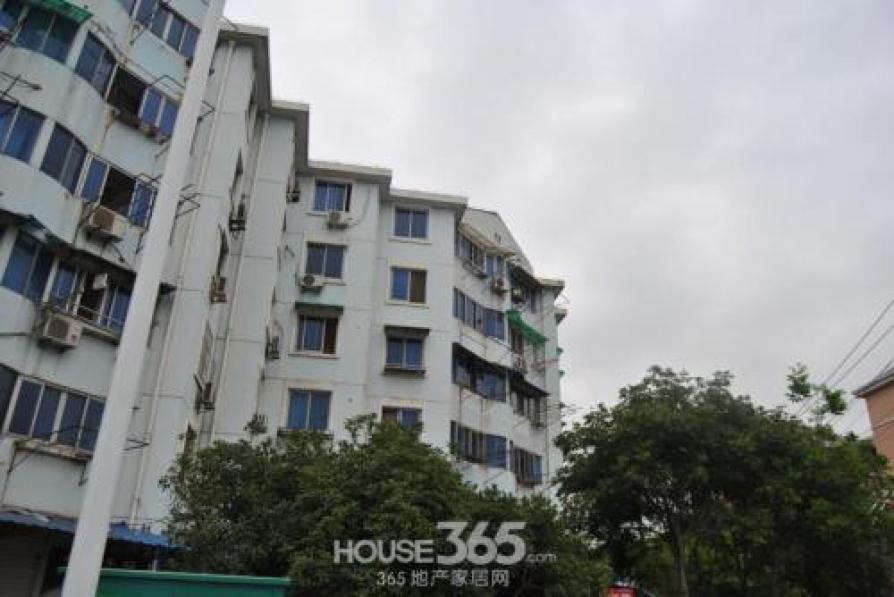 园丁一区2室1厅1卫65.4平米1999年产权房简装