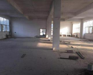 独栋独院综合楼 适合各种业态 洗浴 办公 酒店 公寓 包办