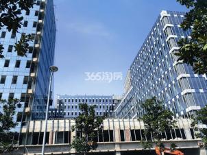绿地之窗,南京绿地之窗二手房租房