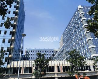 雨花区南京南站 3地铁交汇 品牌物业 500强出品 多种户型