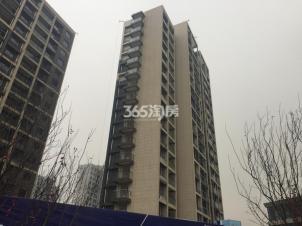 绿地国际花都,南京绿地国际花都二手房租房