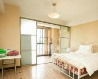 辰龙广场 精装单室套 拎包入住 设施齐全 采光充足 房主诚