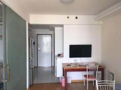 将军大道 S1地铁口 江南青年城 精装单身公寓
