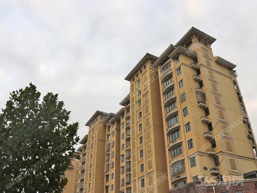 东部星城3室2厅1卫89.4平米2010年产权房精装