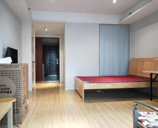 天玺国际 新出好房 酒店式公寓 上班贵族 业主已连续降价
