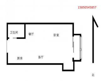 S1翠屏山站 托乐嘉单身公寓 精装修 南航 正德