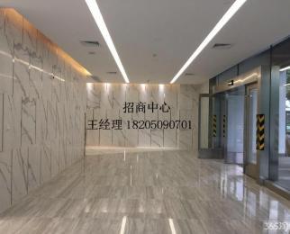 安科大厦 招商部直租仅此一套小户 电梯口 随时看房