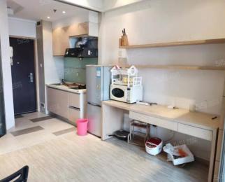 河西庐山路 紫鑫西区中央 精装单室套 中高楼层 随时看房