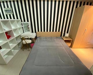 将军大道S1 托乐嘉贵邻居 居家精装单室套 设施齐全拎包入