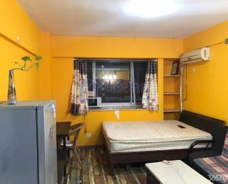 新出 托乐嘉单身公寓 短租三个月 看房随时 拎包入住