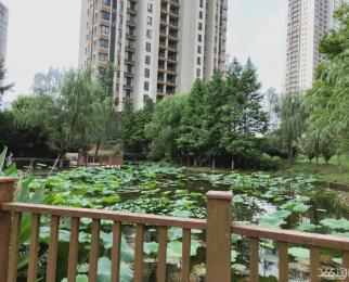 仙林悦城 楼下直达地铁的公交 首付30万买万达茂旁的精装住宅