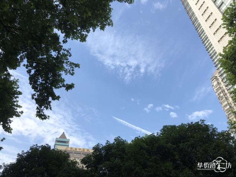 就在今天,百余名南京医科大老师挤爆金牛湖半岛,游园、农家乐、放风筝、坐游艇,不亦乐乎!